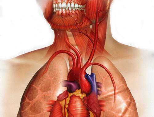 Association d'infections buccales chez l'enfant avec des facteurs de risque cardiovasculaires et l'athérosclérose subclinique à l'âge adulte